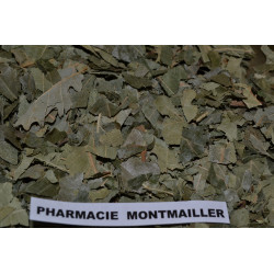 CHENE FEUILLE   7€ LES 100 G