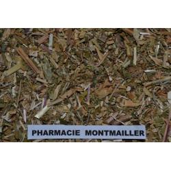 SAPONAIRE PLANTE 4.90€ LES 100G