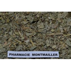 ALCHEMILLE VULGAIRE PLANTE  5.90€ LES 100G